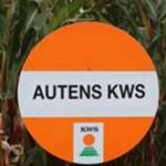 KWS-Autens-email-700-702x336