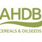 ahdb cereals and oilseeds logo 700