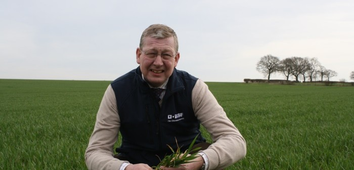 Latent Septoria assessments from 2017 provide guidance for upcoming T2 sprays