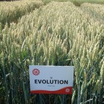 Evolution is suitable for the late drilling slot