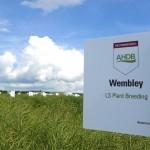 Wembley  - LSPB Restored Hybrid