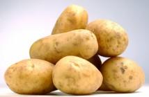 Rothamstedpotatoes