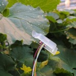 leaf sensor Afzal 2