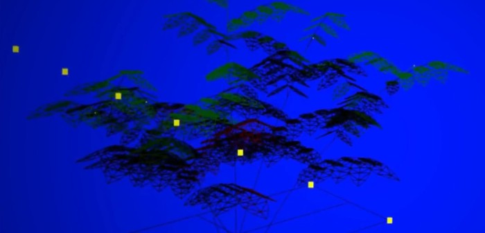 3D Modelling of plant architecture