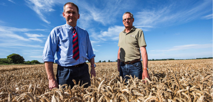 Head of Elsoms ggriculture business, Adrian Hayler, and wheat breeder Stephen Smith