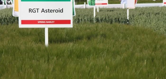 RGT Asteroid