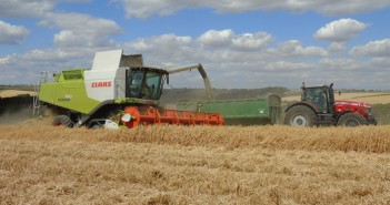 Peas prove their worth for a second year running in Lincolnshire