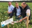 Simon Alexander (right) Mark Stalham and Graham Bannister inspect cover crops