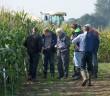 Maize Demo Day
