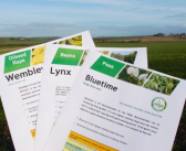 Up to date PGRO fact sheets for spring beans, combining peas, AHDB recommended oilseed rape varieties now available