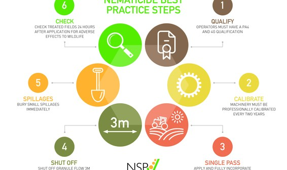 NSP infographic - APP
