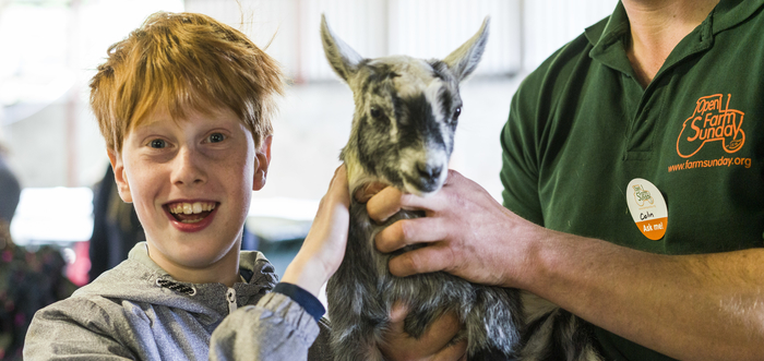 Open Farm Sunday, Credit Hilton of Aldie, Kinross, Scotland