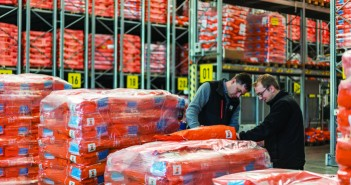 KWS maize seed treated with Initio Bird Protect in warehouse reduced