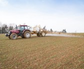 Final chance for post-em herbicides in wheat