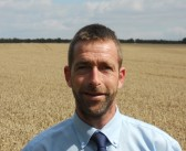 Check weeds ahead of harvest