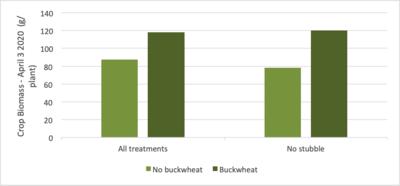 Fig.3 Buckwheat value