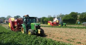 Harvesting_2 harvesters