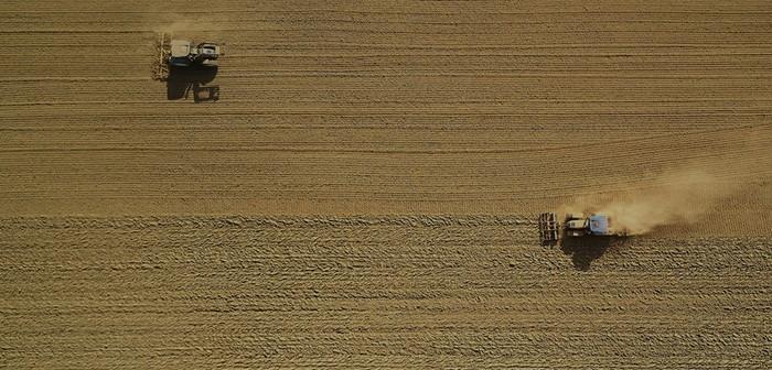 Graintab team share their top grain marketing tips ahead of harvest