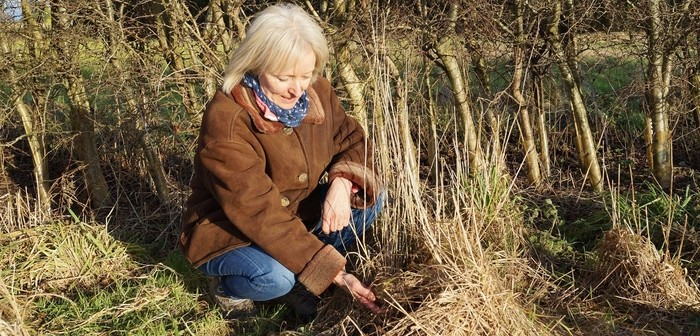 Kate Faulkner with a harvest mouse nest
