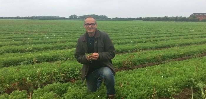 Veg agronomist Ashley Cooley