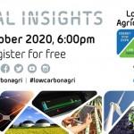 Renewables Digital Insights
