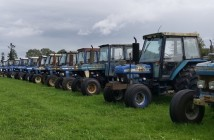 Wilsons Auctions - Ford Tractors