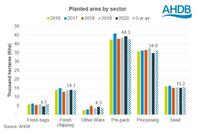 CHART The area planted with processing potatoes was 7.1% smaller this year