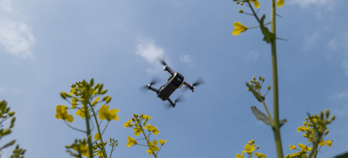 Skippy Scout Mavic air above OSR