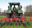 Weed control in wheat