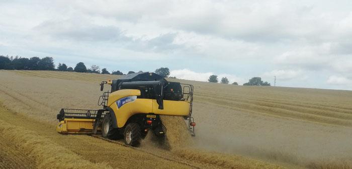 LG Diablo tops barley trials in the north