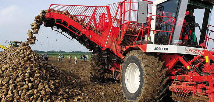 First ever sugar beet pricing platform launched