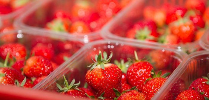 Scottish berry supplier Angus Soft Fruits to eliminate over 150 tonnes of single use plastic a year