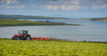 ORKNEY-5561