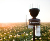 To drill or not to drill ? Ask Sencrop…